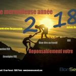 BonSens Conseil Voeux 2018