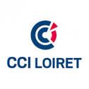 Logo CCI Loiret